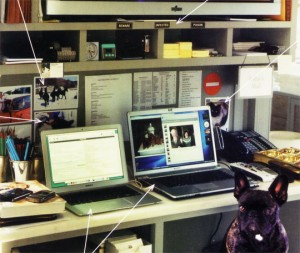 Martha Stewart's home office desk, very filled but organized