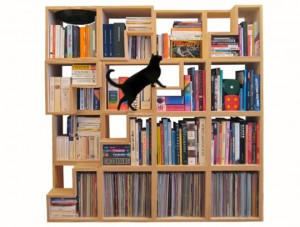 Bookcase with steps for cats to climb.